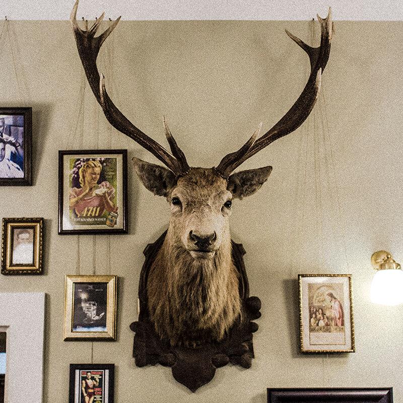 Der Hirsch im Duke Johns Barbershop